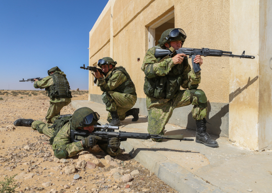 В ходе совместного учения российские и египетские десантники освободили населенный пункт от условных НВФ